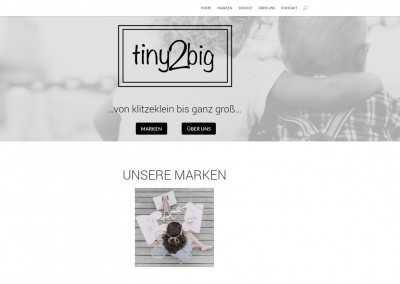 Website-Design nach Vorlage Tiny2Big